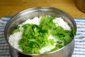 mint and coriander for chicken briyani
